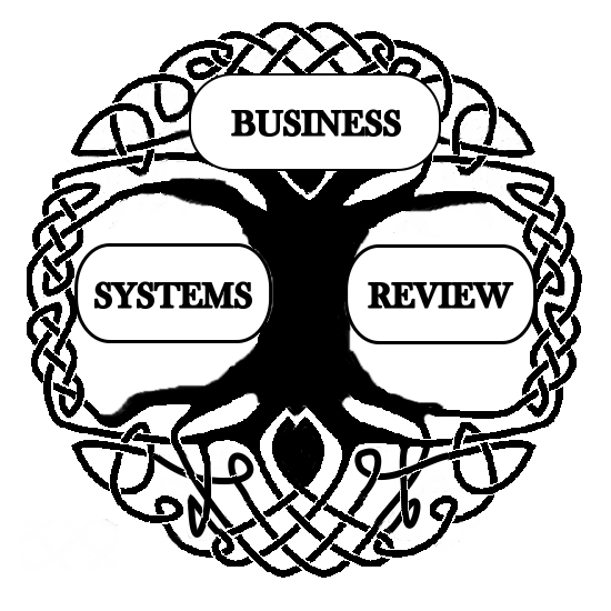 Business Systems Review