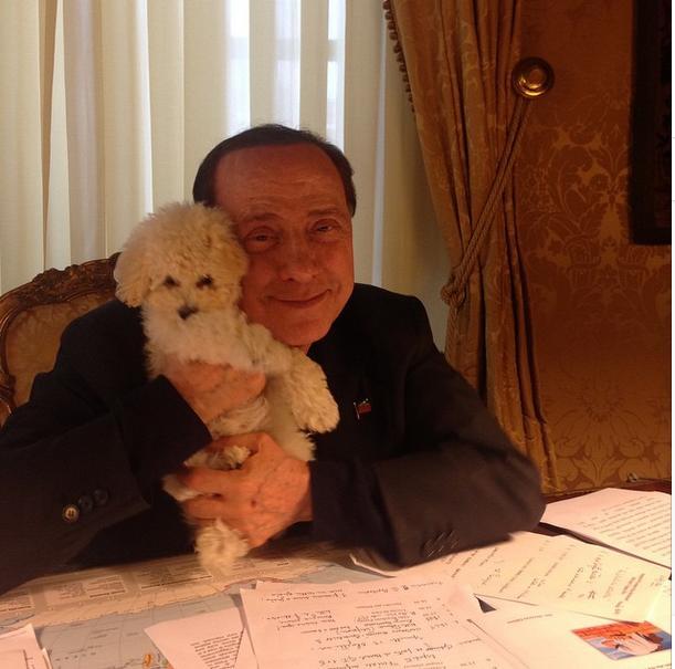 Berlusconi da web