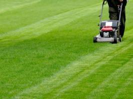 Sfalciamento dell'erba