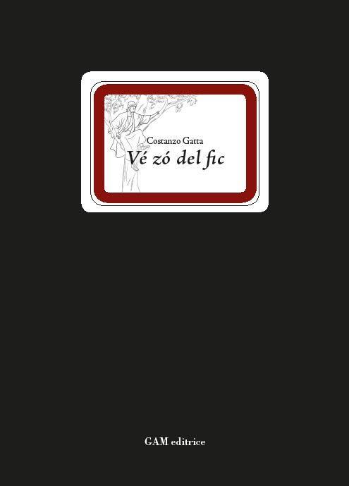 Ve zo dal fic, il nuovo libro di Costanza Gatta.