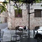 Riserva del Grande a Brescia, gli interni del nuovo locale di Ampelio Zecchini, foto Andrea Tortelli, www.bsnews.it