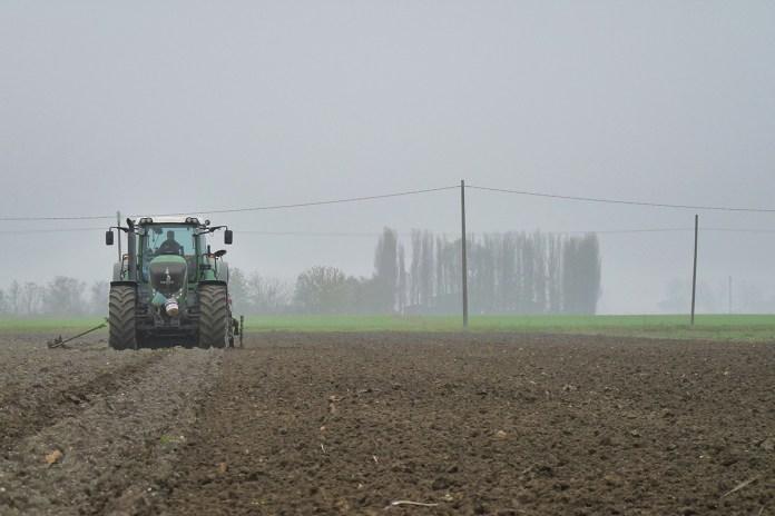 Un contadino durante la semina, foto generica da web