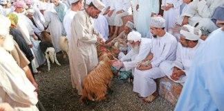 La festa islamica del sacrificio