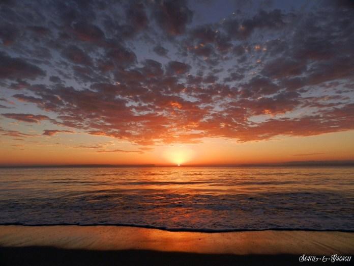 9. L'Australia è il paese dei contrasti. Il paese più arido del mondo è circondato dall'acqua, elemento che si ripresenta in rigogliose cascate poco lontane dalla costa. E' sempre la natura, con i suoi colori, a regalarci le emozioni più grandi, e anche una sveglia che suona alle 5.30 viene apprezzata quando ad aspettarci c'è un'alba come questa. - Un salto in Australia, mostra fotografica di un viaggio on the road dei bresciani Patrizia Pietropaolo e Matteo Beschi