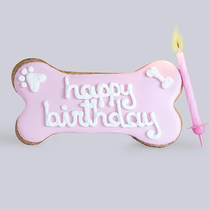 Una torta di compleanno per cani in vendita sul sito di DoggyeBag di Bagnolo, a Brescia