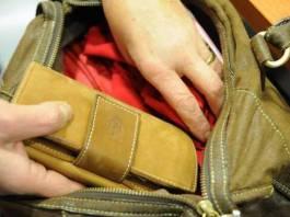 I ladri sono stati beccati mentre nascondevano il bottino in una borsa