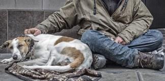 Un senzatetto con cane