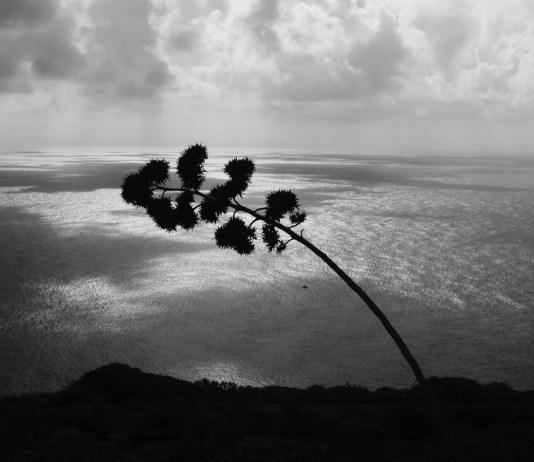 Pantelleria - foto da ufficio stampa Pantelleria: il rumore del silenzio