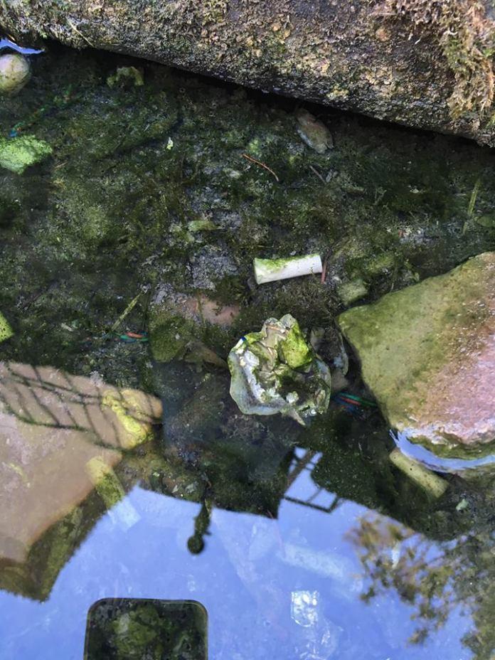 L'immagine di una fontana iseana postata dal sindaco Riccardo Venchiarutti