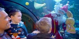 Gardaland SEA LIFE Aquarium_Natale 2018