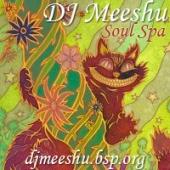 DJ Meeshu - Soul Spa