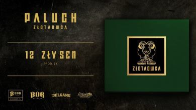 "Photo of Paluch ""Zły sen"" prod. 2K"