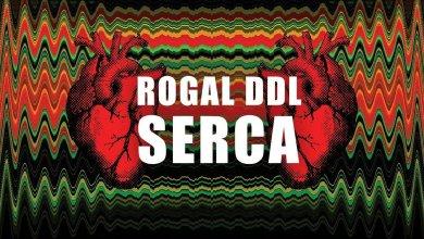 Photo of Rogal DDL ft. Emzer, Marcinek 3Z, Kobik, DJ Gondek – Serca