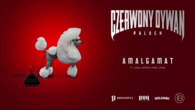 "Photo of Paluch – ""Amalgamat"" feat. Joda, Szpaku prod. APmg (OFFICIAL AUDIO)"