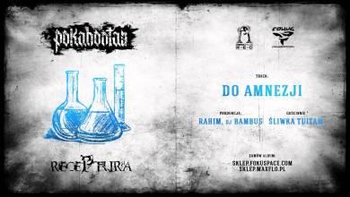 Photo of Pokahontaz – 10 Do amnezji ft. Śliwka Tuitam (Receptura LP)