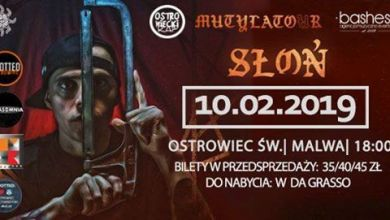 Photo of Słoń w Ostrowcu Świętokrzyskim / Mutylator/ 10.02 / Malwa