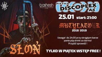 Photo of Słoń live on stage! Discoplex A4