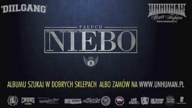 Photo of 13. Paluch ft. Gedz – BOR (prod. Donatan)
