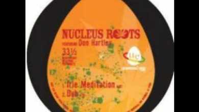 Photo of Nucleus roots – Irie Meditation + dub