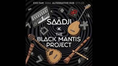 Photo of Saadji – Wallace (The Black Mantis Project Remix)