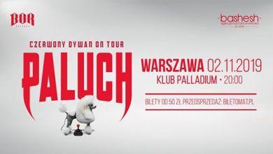 Photo of Paluch • Czerwony Dywan • Warszawa 02.11.2019