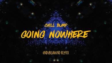 Photo of Chill Bump – Going Nowhere (Ondubground remix)
