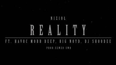Photo of Nizioł ft.Havoc Mobb Deep,Big Noyd,DJ Shoodee – Reality
