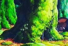 Photo of Obejrzyj film