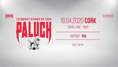 """Photo of Paluch """"Czerwony Dywan"""" Cork 18.04.2020"""