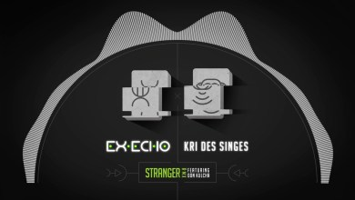 Photo of Ex-Echo x Kri Des Singes – Stranger Remix feat. Don Kulcha