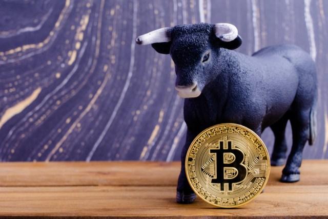 Bitcoin Boğa Piyasası