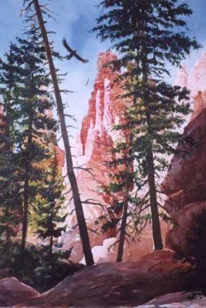 Soaring at Bryce Canyon