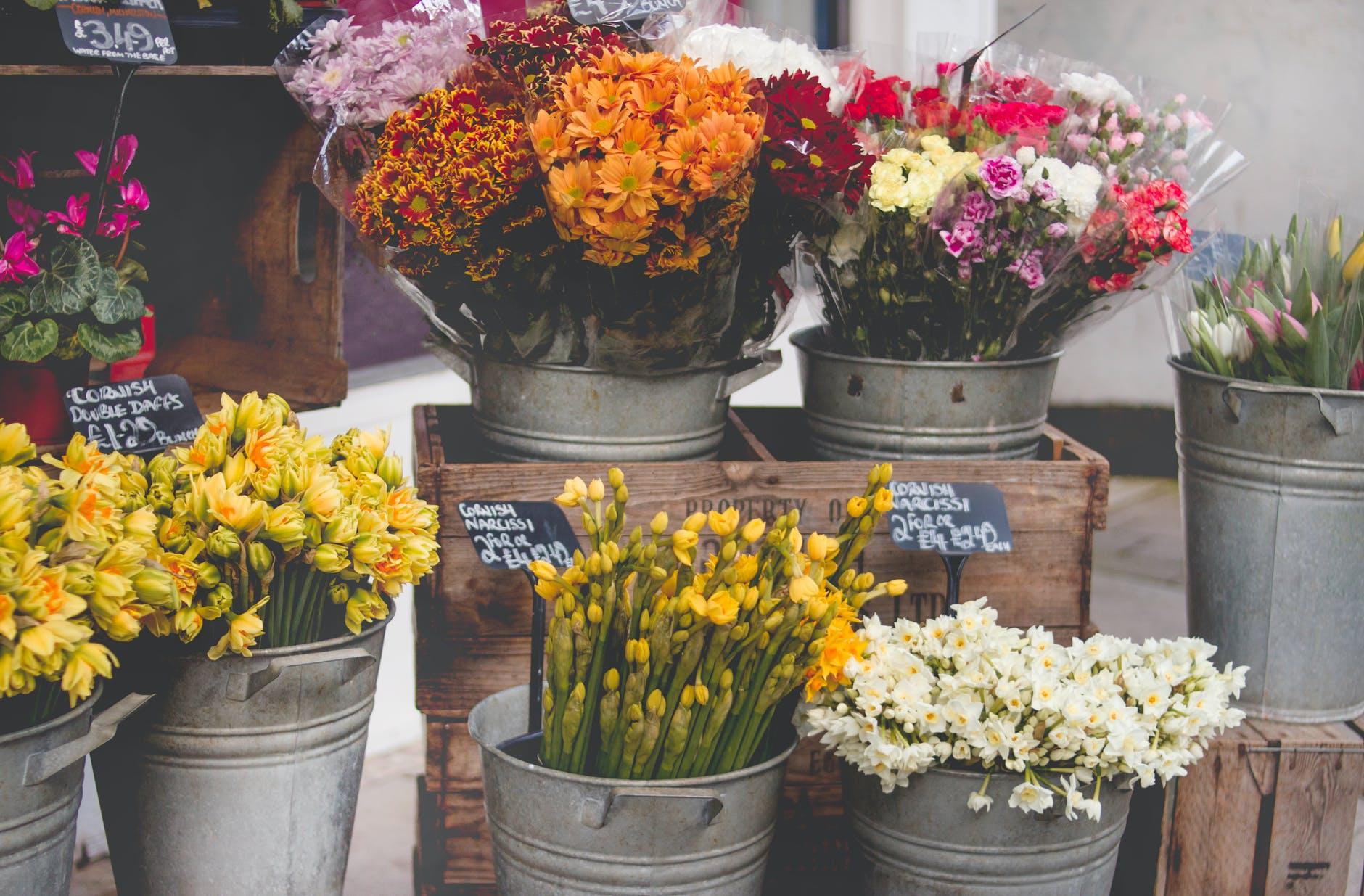 photo of flowers on bucket