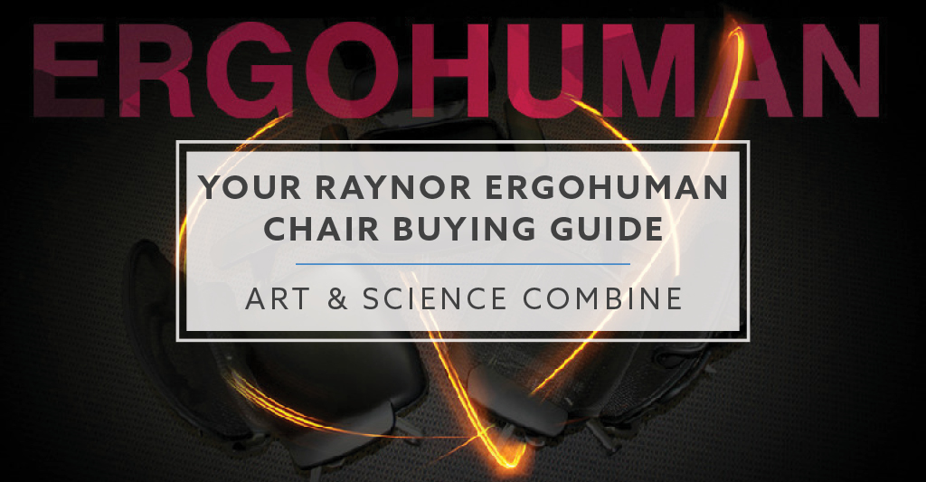 raynor ergohuman chair best lumbar support for the buying guide your art and science combine