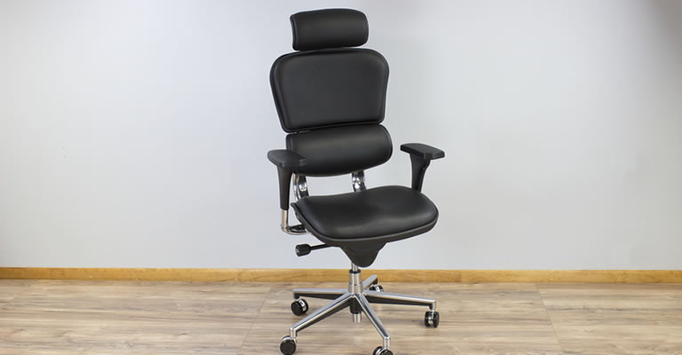 raynor eurotech ergohuman mesh mid back task chair black stores that sell beach chairs office - photos and pot dianxian2007.com