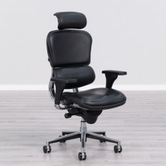 Ergonomic Chair Pros Design Sri Lanka 21 Best Office Reviews For 2019 Raynor Ergohuman High Back Leather