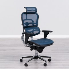 Best Office Chairs For Lower Back Pain Universal Chair Covers Canada 21 Reviews 2019 Eurotech Ergohuman High Ergonomic Mesh