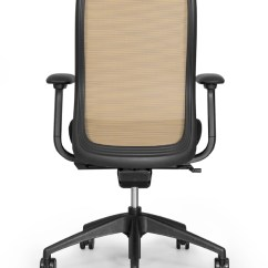 Ergonomic Chair Criteria Design Pictures Office Chairs And Furniture From Btod Com Eurotech Vera Mesh Back