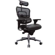 office chair posture buy baby sleeper ergonomic computer chairs and desk raynor ergohuman high back mesh w leather seat