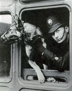 LNER PC with dog.