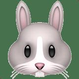 【絵文字】ウサギ 兎うさぎ Rabbit