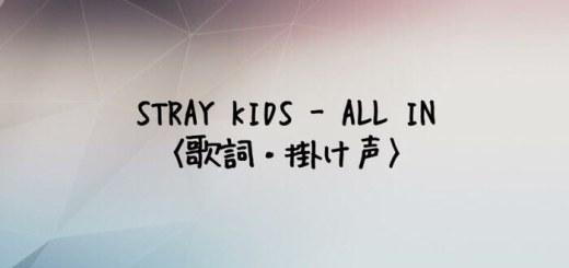 Stray Kids(スキズ) ALL IN【歌詞・掛け声】