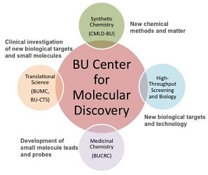 Image result for Department of Chemistry and Center for Molecular Discovery (BY-CMD),