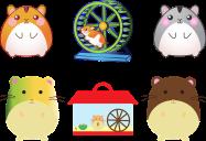 wheel for pet