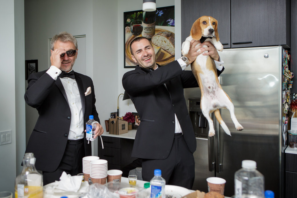 Beagle Puppy as a Groomsman   Chicago Wedding   Cafe Brauer Wedding   Bubbly Moments
