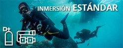 Inmersión ESTÁNDAR