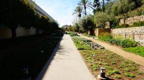 Le petit jardin des herbes aromatiques