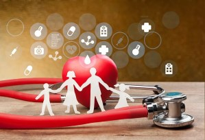 health plan audit cpa