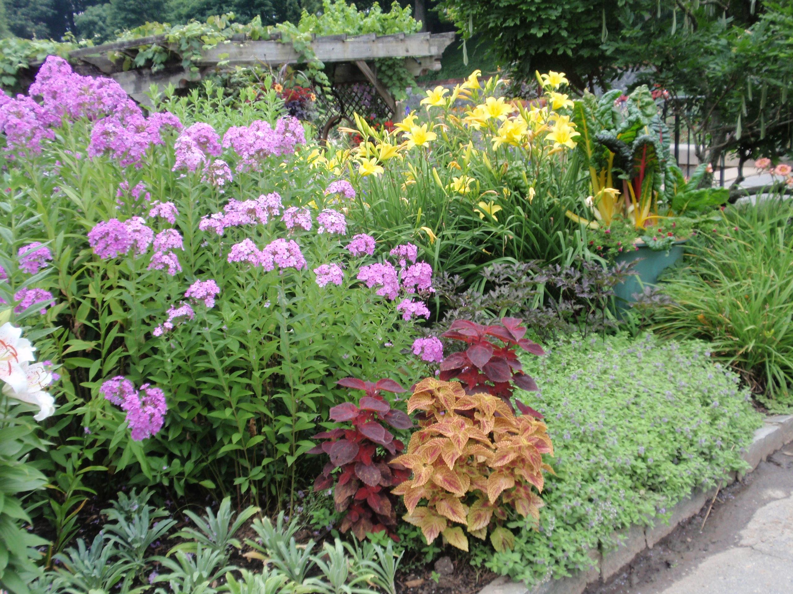 Small Perennial Flower Garden Plans Flowers Ideas
