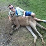 Bucket List: Play With Kangaroos